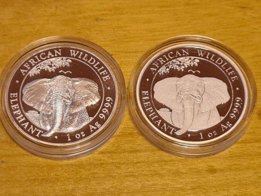 Side by side Somalian Elephants 2021